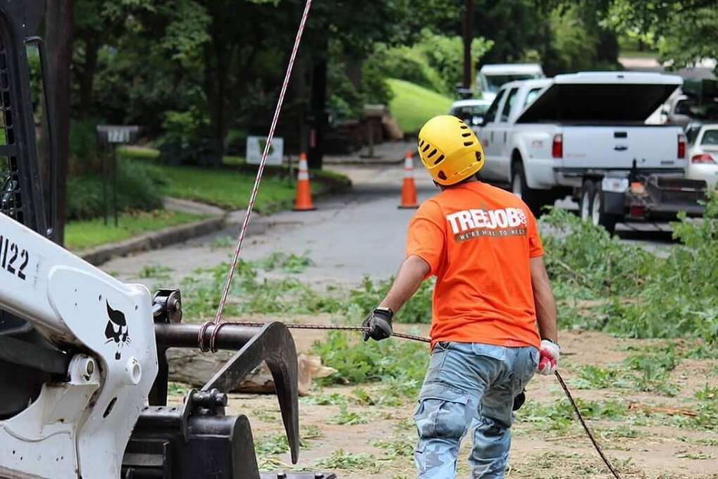 Arborist Consultations-Charleston Tree Trimming and Stump Grinding Services-We Offer Tree Trimming Services, Tree Removal, Tree Pruning, Tree Cutting, Residential and Commercial Tree Trimming Services, Storm Damage, Emergency Tree Removal, Land Clearing, Tree Companies, Tree Care Service, Stump Grinding, and we're the Best Tree Trimming Company Near You Guaranteed!