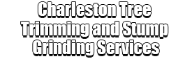 Charleston Tree Trimming and Stump Grinding Services Logo-We Offer Tree Trimming Services, Tree Removal, Tree Pruning, Tree Cutting, Residential and Commercial Tree Trimming Services, Storm Damage, Emergency Tree Removal, Land Clearing, Tree Companies, Tree Care Service, Stump Grinding, and we're the Best Tree Trimming Company Near You Guaranteed!