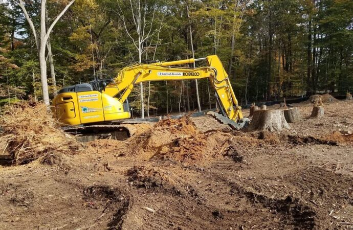 Land Clearing-Charleston Tree Trimming and Stump Grinding Services-We Offer Tree Trimming Services, Tree Removal, Tree Pruning, Tree Cutting, Residential and Commercial Tree Trimming Services, Storm Damage, Emergency Tree Removal, Land Clearing, Tree Companies, Tree Care Service, Stump Grinding, and we're the Best Tree Trimming Company Near You Guaranteed!