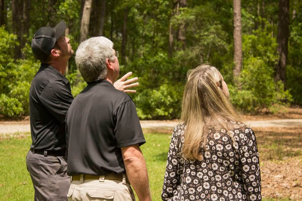 Tree Assessments-Charleston Tree Trimming and Stump Grinding Services-We Offer Tree Trimming Services, Tree Removal, Tree Pruning, Tree Cutting, Residential and Commercial Tree Trimming Services, Storm Damage, Emergency Tree Removal, Land Clearing, Tree Companies, Tree Care Service, Stump Grinding, and we're the Best Tree Trimming Company Near You Guaranteed!