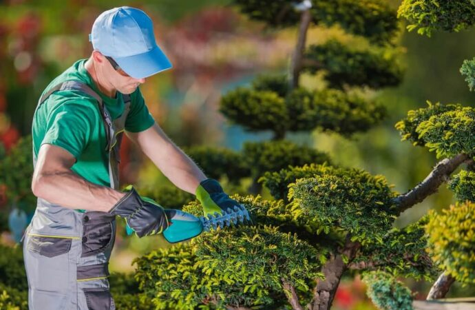 Tree Pruning-Charleston Tree Trimming and Stump Grinding Services-We Offer Tree Trimming Services, Tree Removal, Tree Pruning, Tree Cutting, Residential and Commercial Tree Trimming Services, Storm Damage, Emergency Tree Removal, Land Clearing, Tree Companies, Tree Care Service, Stump Grinding, and we're the Best Tree Trimming Company Near You Guaranteed!